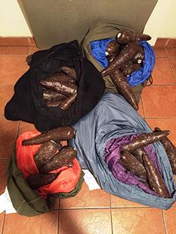 Four Bags of hollowed out plastic yucca containing cocaine.